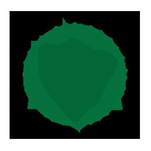 Co-Organizer Logo_300X300_ITA